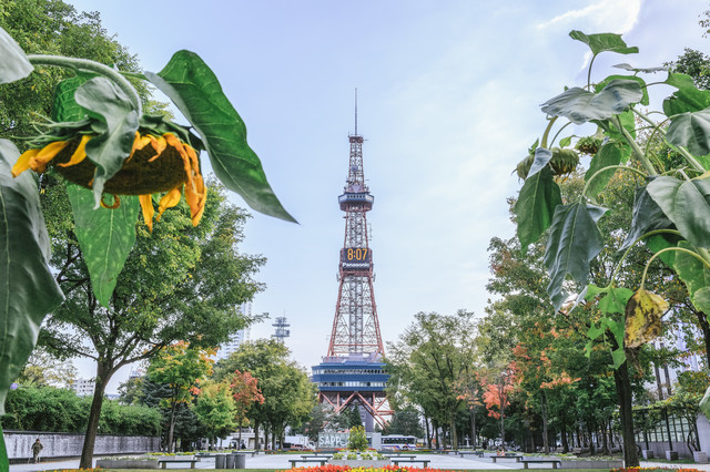 「北海道」といえば何が思い浮かぶ?食べ物・観光地・人の性格・気候など連想できることまとめ