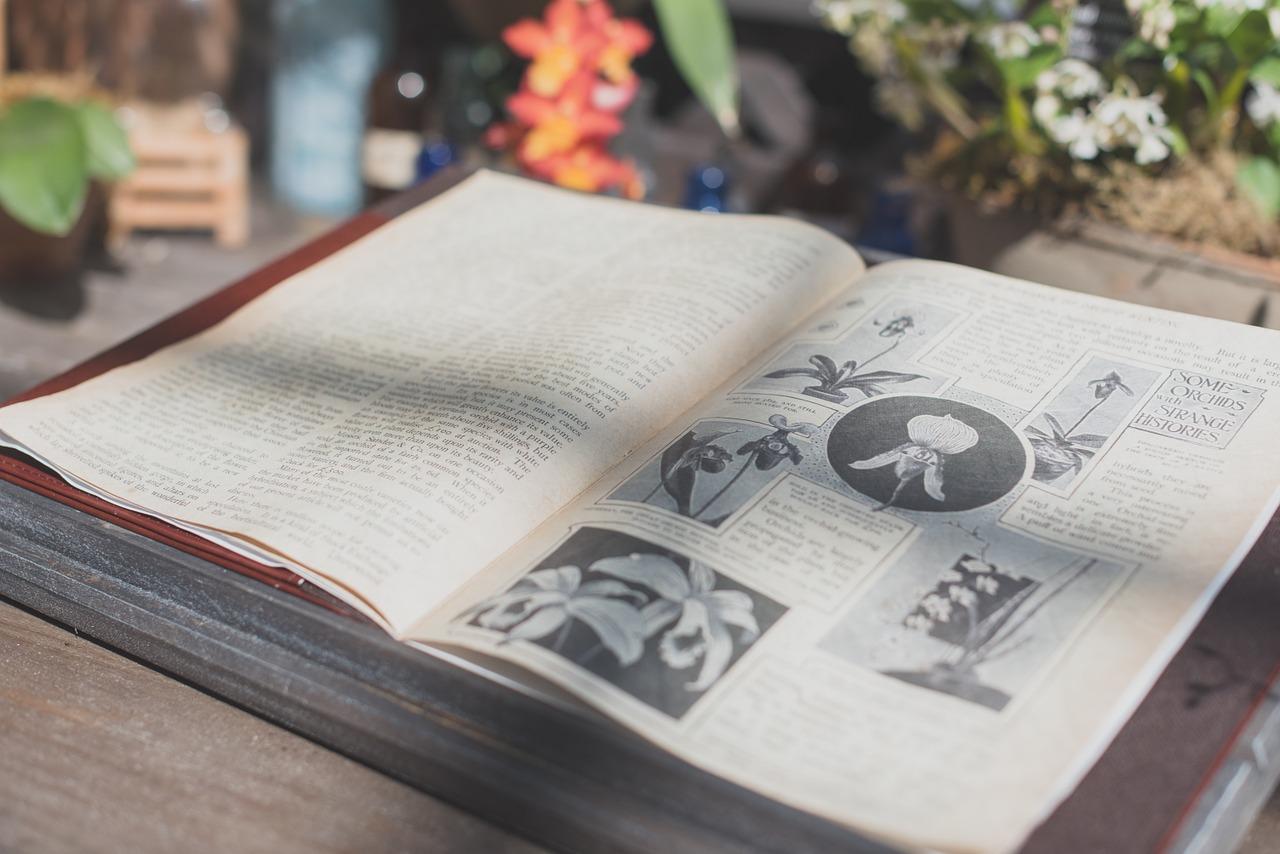 小学生の子供向けおすすめ百科事典はどれ?百科事典を用意するメリットとは