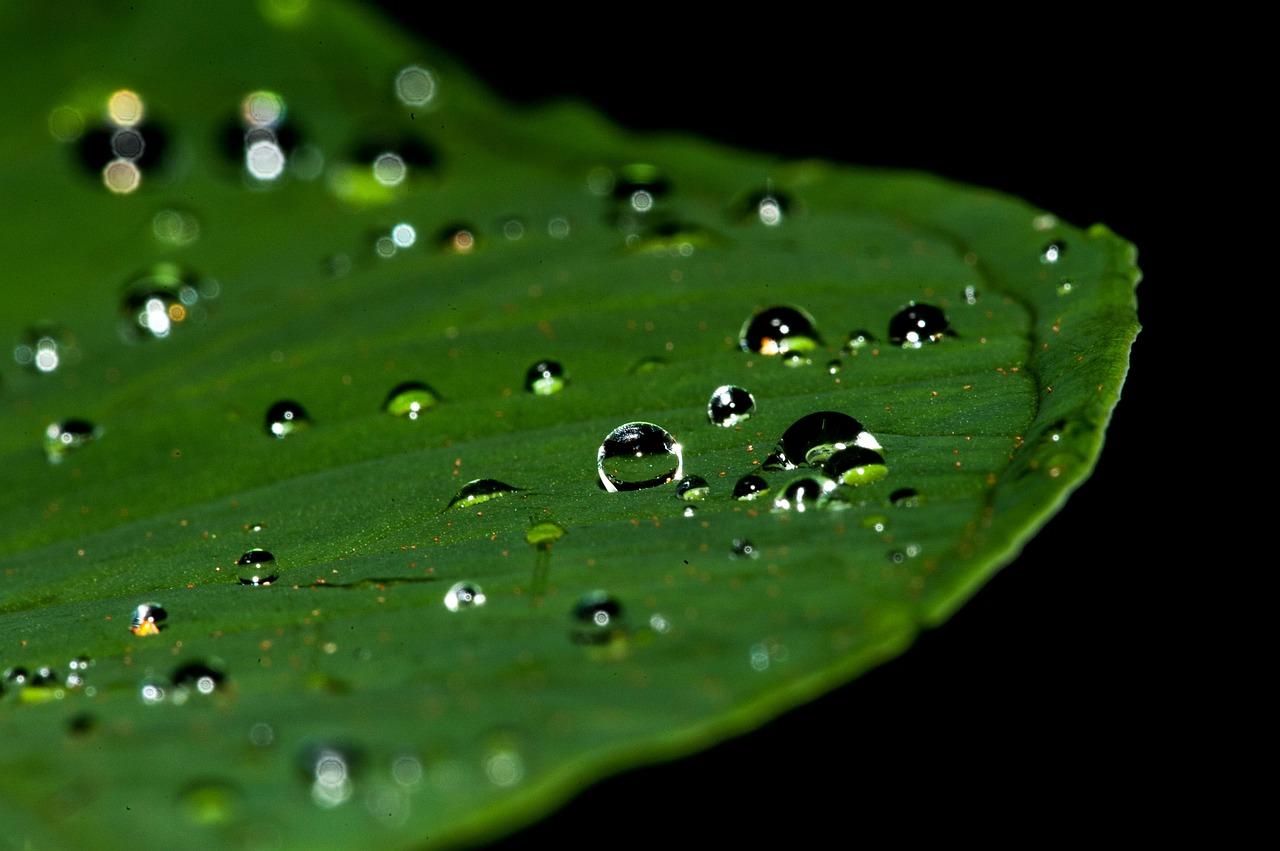 droplets-195841_1280