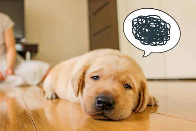 挫折経験が無いのは頑張っている証拠!?挫折する理由と防ぐ方法