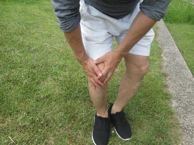 【膝】身体の慣用句とその使い方・例文パート1