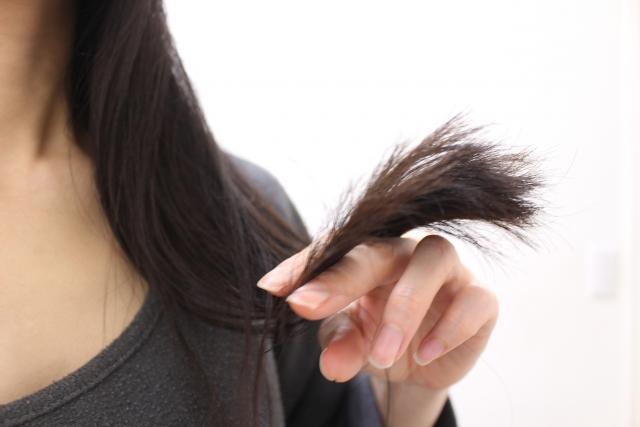 【髪・髭・髻】身体の慣用句とその使い方・例文